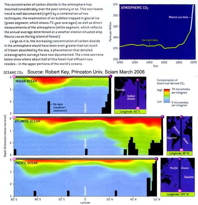 seawater density vs temperature